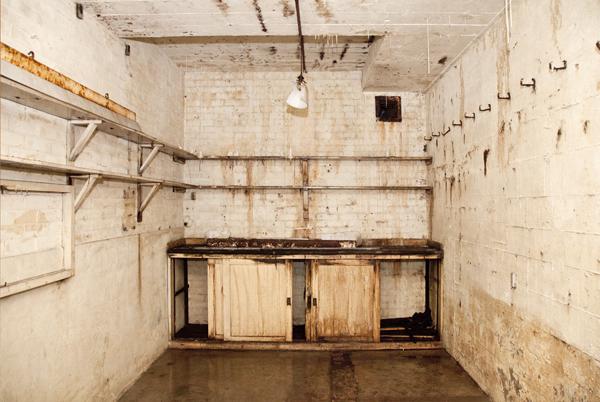 paddock kitchen